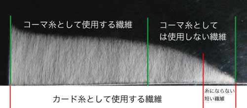 ステープルダイヤグラム