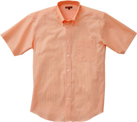 半袖ピンチェックシャツ